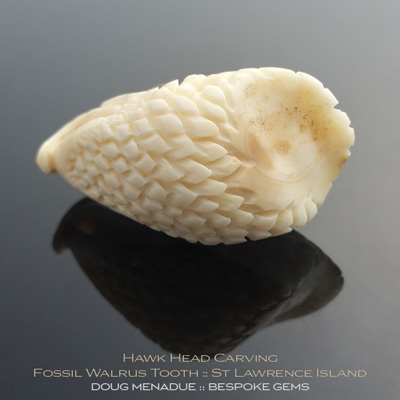 Fossil Walrus Tooth, Hawk Head Carving, St Lawrence Island, Alaska, #c4, A beautiful natural Fossil Walrus Tooth from St Lawrence Island, Alaska. Doug Menadue :: Bespoke Gems :: WWW.BESPOKE-GEMS.COM - Finest Precision Gemcutting Based In Sydney Australia