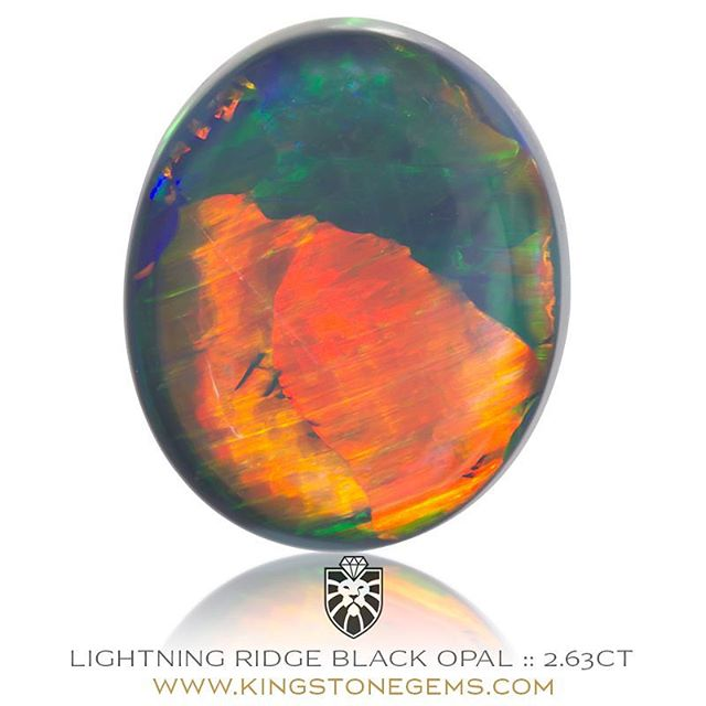 LIGHTNING RIDGE BLACK OPAL - 2.63CT - 10.33X8.95X4.62MM - A spectacular loose natural Australian black opal from Lightning Ridge. This is a superb black opal and the first thing that strikes you is the big bold flash of reddish orange gold, like a golden eye of a dragon. This is a rare and highly sort after colour in the world of opals and to have such a remarkable display of this hue is really something unique and quite special. This is the perfect ring stone, an opal both ideal in its shape and size with such a powerful presence and personality. This black opal is very highly recommended to the collector or connoisseur of fine gemstones. A world class black opal from the famous opal fields of Lightning Ridge in the remote outback of New South Wales.  WWW.KINGSTONEGEMS.COM  SYDNEY CBD AUSTRALIA - Precision Gemcutting and Lapidary Services Located In Sydney Australia