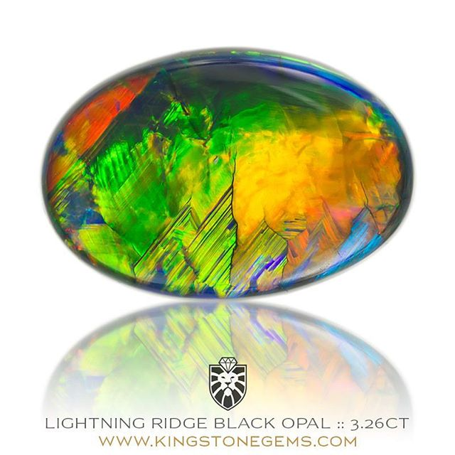 LIGHTNING RIDGE BLACK OPAL - 3.26CT - 13.21X8.93X4.43MM - An incredible world class Australian black opal from the Lightning Ridge opal fields of remote outback New South Wales. A beautiful black opal showing the full spectrum of colour in big bold flashes. A magnificent opal available from King Stone Gems.  WWW.KINGSTONEGEMS.COM  SYDNEY CBD AUSTRALIA - Precision Gemcutting and Lapidary Services Located In Sydney Australia